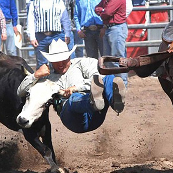 Cowgirl racing, horse-and-cowboy roping, steer wrestling, team roping, bull riding.