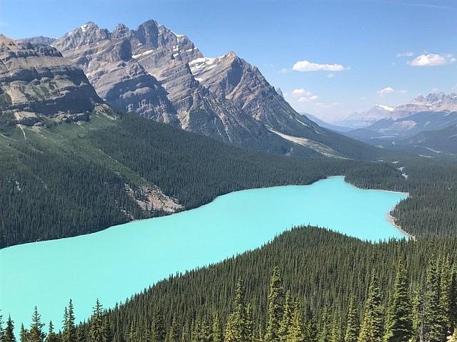 Turquoise-colored Peyto Lake.