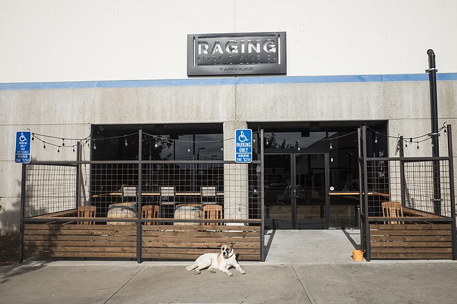 Dog-friendly patio at Raging