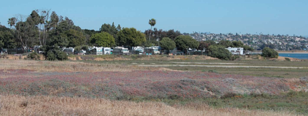 Kendall-Frost marsh, Campland by the Bay in the background