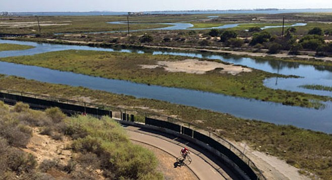 Wildlife and migratory birds in particular are vulnerable to contaminants in Sweetwater Marsh.