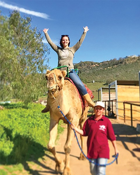 """Oasis Camel Dairy. Rides are done """"county-fair style."""""""
