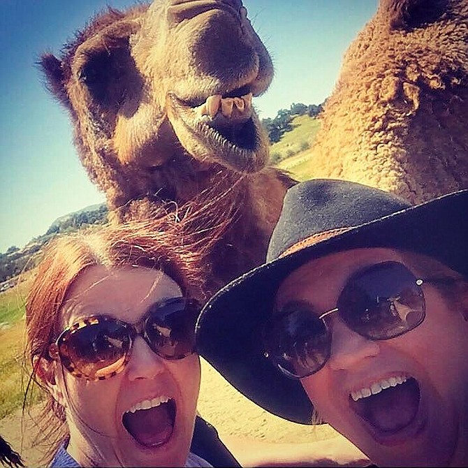 their ain't no selfie like a camel selfie!