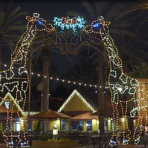 Christmas-themed events at the zoo