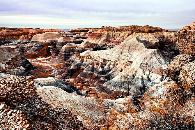 Painted Desert, Petrified Forest, Holbrook, AZ  image shot on Saturday Dec 16- very cold and overcast but beautiful.  jm
