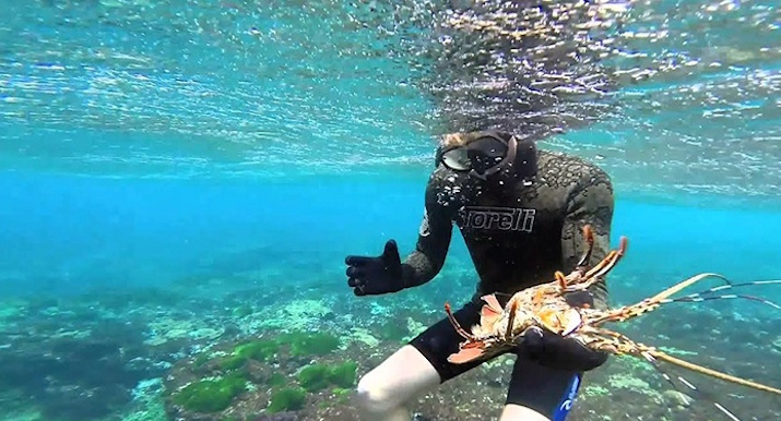 Five Best Snorkeling Places In San Diego