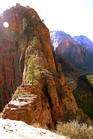 Hikers ascending Angels Landing.