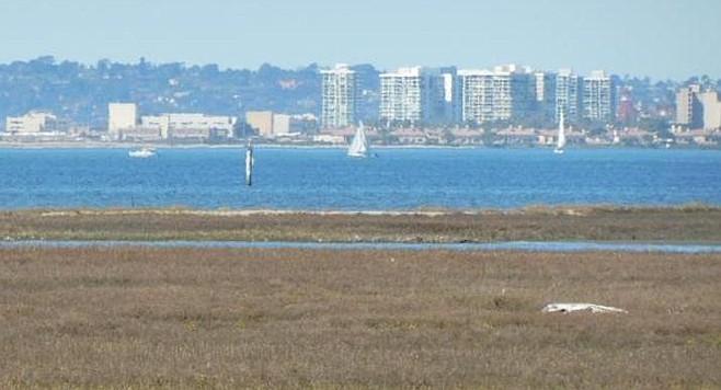 San Diego Bay from Gunpowder Point