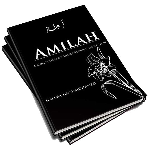The author of Amilah will discuss her first book