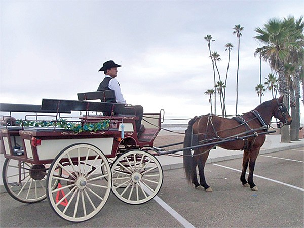 Horse-and-carriage rides in Oceanside