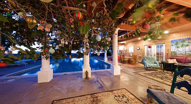 Olympic-size pool beyond the carpeted patio