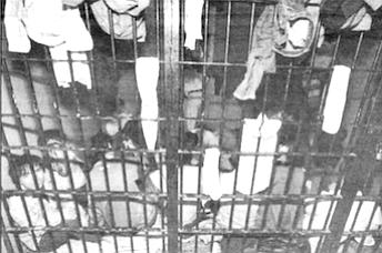 In Ensenada jail