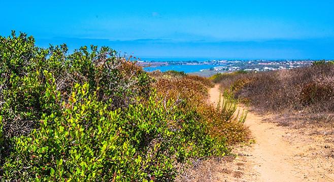 Trail heads looking toward lagoon
