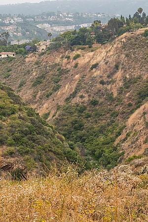 San Marcos Creek's Box Canyon