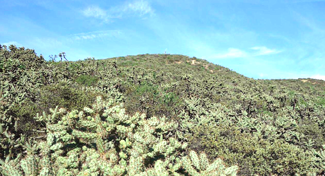 The land for the park is part of a large, rough area of ridges and canyons.