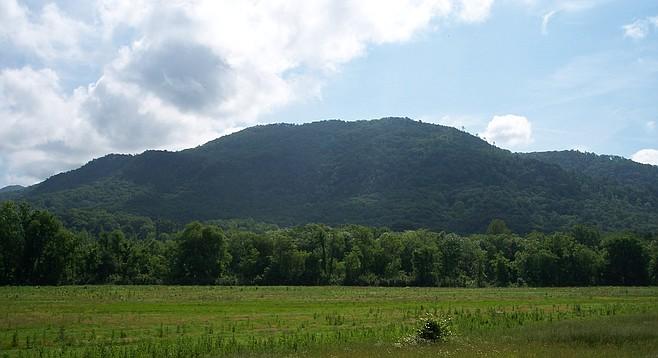 Chilhowee Mountain