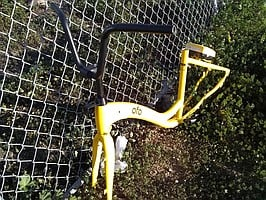 stripped ofo by Euclid trolley