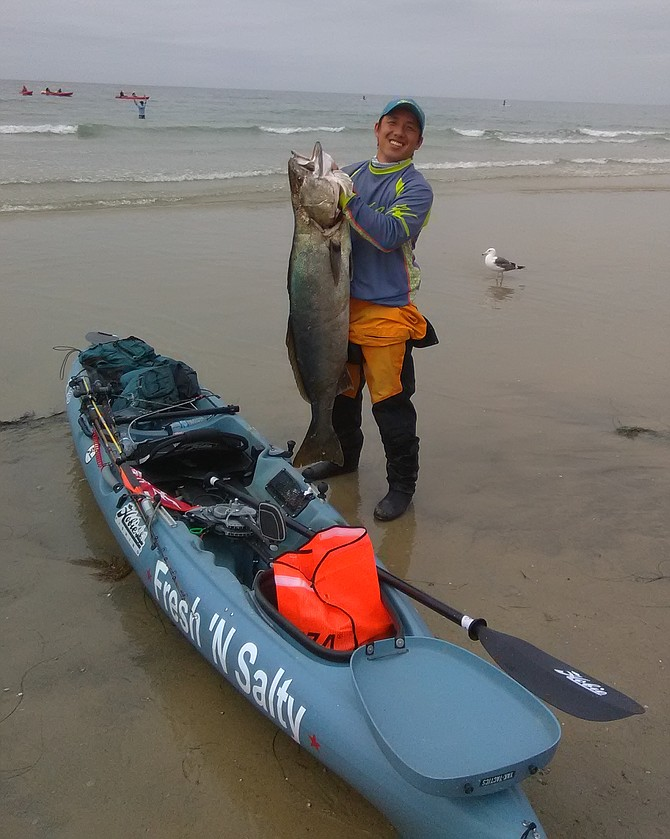 """Kayak angler Bee from Sacramento with a heavy """"biscuit"""" out of La Jolla - his first white seabass"""