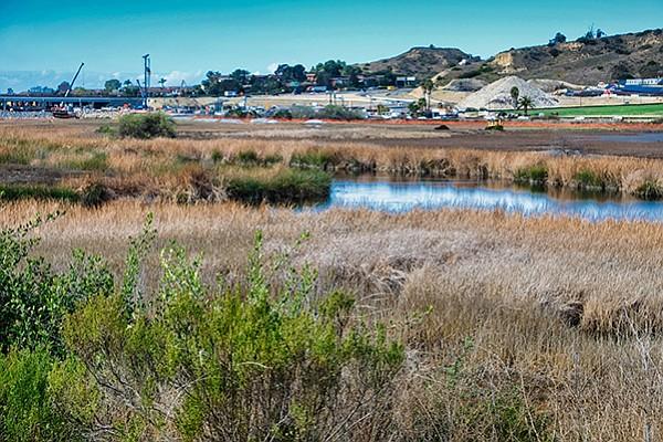 Working to restore the wetlands
