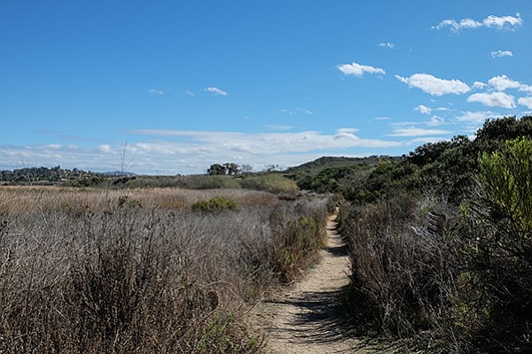 Chaparral on the right, wetlands on the left