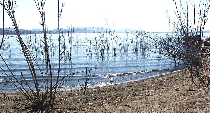Lake Elsinore has a habit of coming back strong after die-offs during drought years.