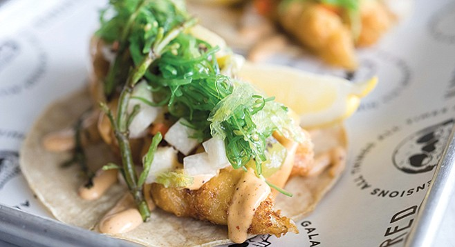 Kindred's beer batter palm tacos