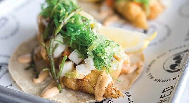 Kindred's beer batter palm tacos - Image by Jim Sullivan