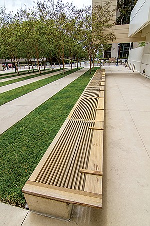 The slats in the courthouse bench mimic the alternating strips of grass and pavement.