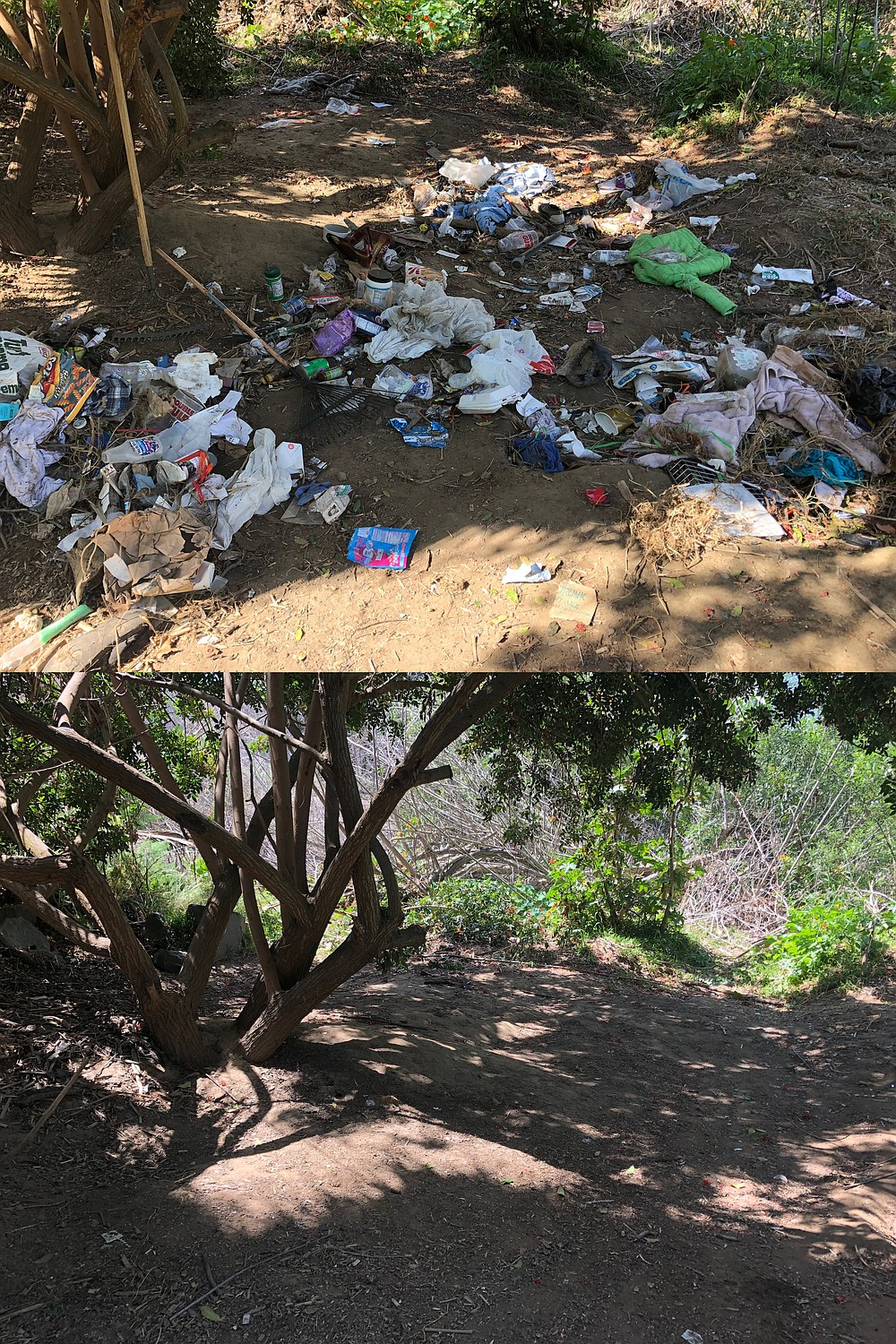 One Pacific Beach resident said the new neighborhood policing division is already paying dividends with the quick removal and clean-up of a homeless encampment along Rose Creek in May (before and after photo).