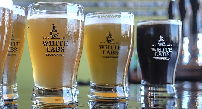 A hefeweizen, brut IPA, and breakfast stout at the White Labs tasting room