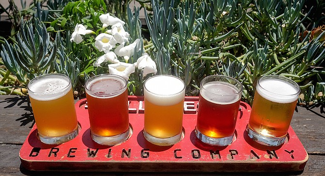 An IPA, red ale, pale ale, scotch ale, and cucumber lager at Hillcrest Brewing Company