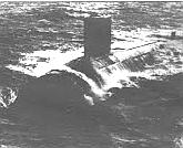 Blueback at sea