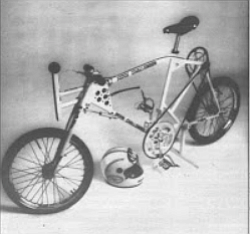 The $10,000 bicycle with motorcycle tires and double-reduction direct-drive gears.