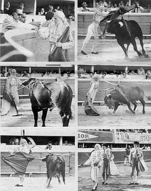 """The alternativa. As soon as the plans for Martinez's alternativa began to spread throughout the bullfighting world, """"all my fights were canceled."""""""