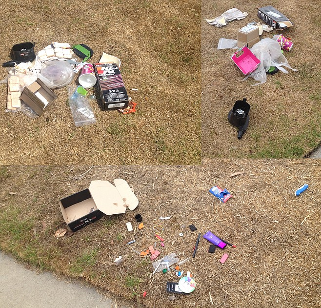 Remains of items thieves didn't want from vehicle break-ins in Clairemont.