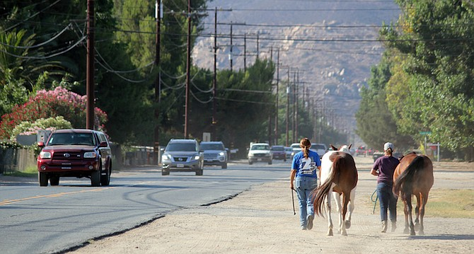 Horses and cars on Moreno Ave.
