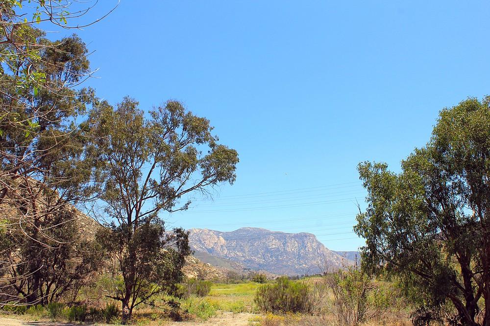 El Monte Valley in spring