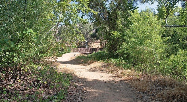 Approaching the bridge crossing Sycamore Creek