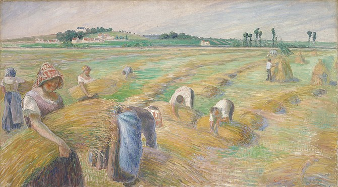 Camille Pissarro: The Harvest