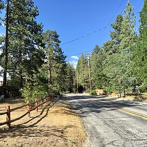 Among the pines in Idyllwild.