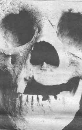 Bada determined the Del Mar skull to be 48,000 years old. The oldest previously discovered bones in North America were radiocarbon dated at 23,600 years.