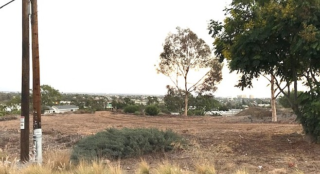 The largest undeveloped parcel in Golden Hill