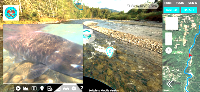 Resulting views of mapping Elwha River (WA) on FishViews