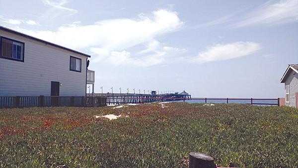 Elm, Imperial Beach