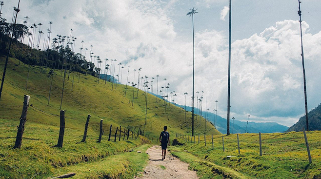 Hiking through Colombia's stunning Valle de Cocora, a half hour northeast of Salento.