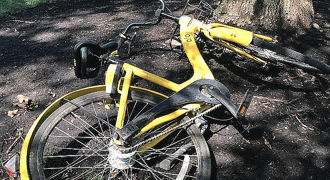 Remains of Ofo bike in San Diego. White's lobbying outfit was employed here by Ofo of China.