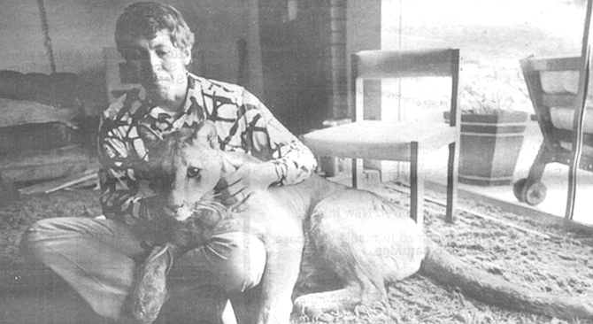 The county's Animal Control Department issued Barton a citation ordering him to get rid of the big cat. - Image by Robert Burroughs
