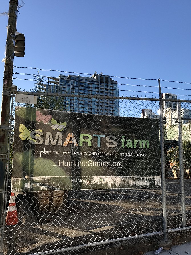 Image by Irvin Gavidor