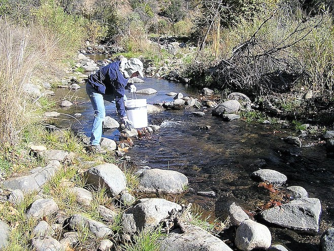 """""""They continued their struggle to return the creek to its natural state."""""""