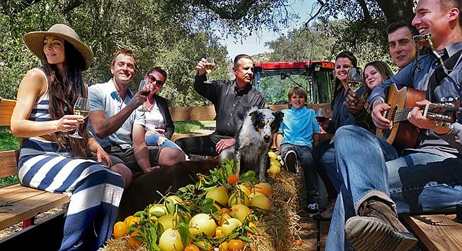 Hay ride and local wine at Rancho Guejito vineyard